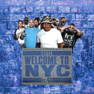 Welcome To NYC web